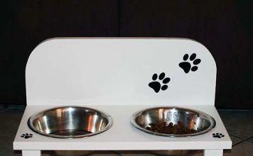 ¿El alimento de perros es malo para los gatos? y viceversa