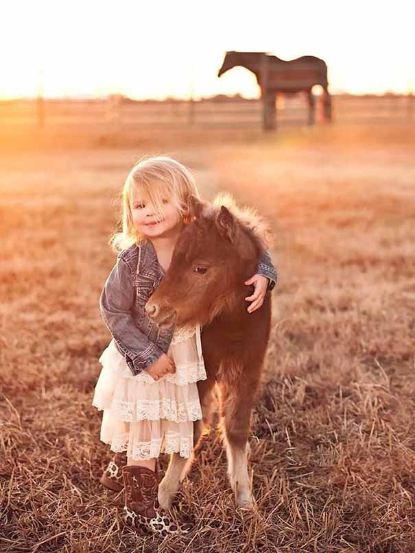 caballos-miniatura-10