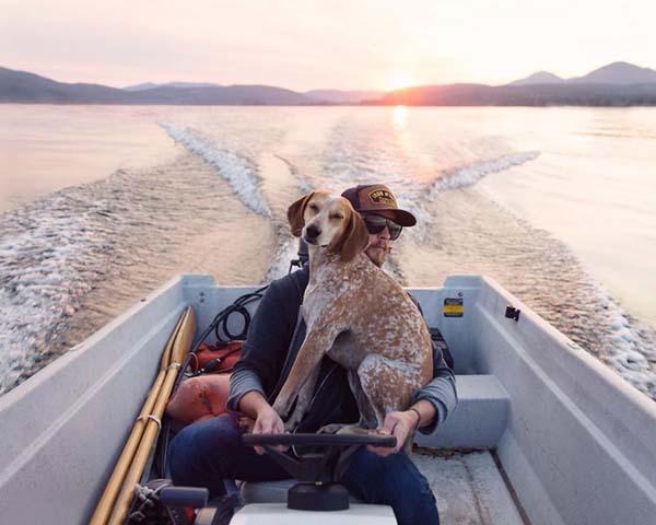 perro-compañero-de-viajes-14