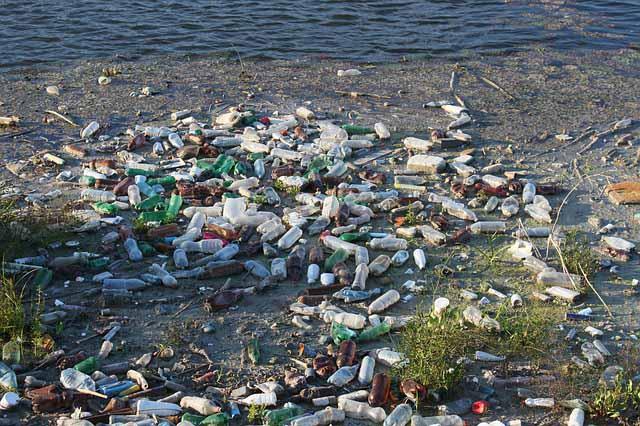 basura-plasticos-notasdemascotas