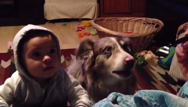 bebé intenta hablar