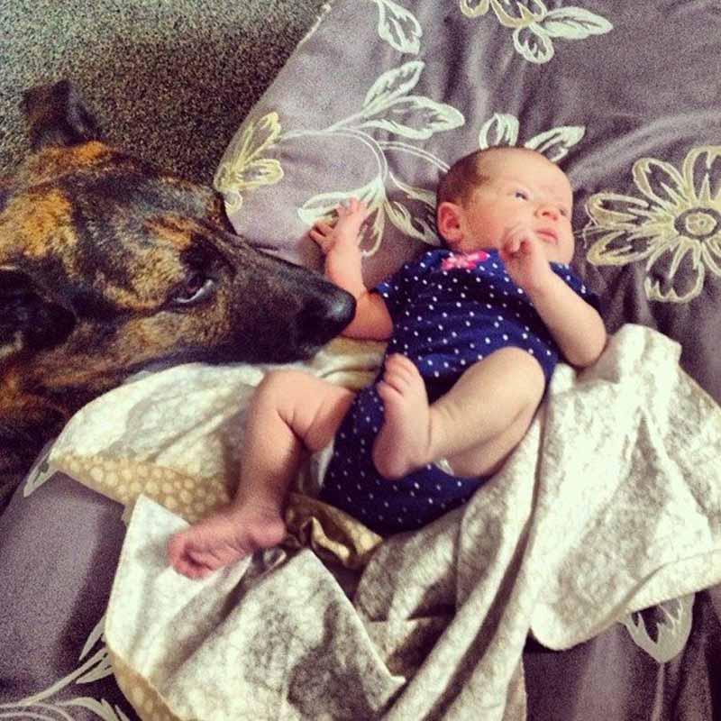 perros-y-bebés-28