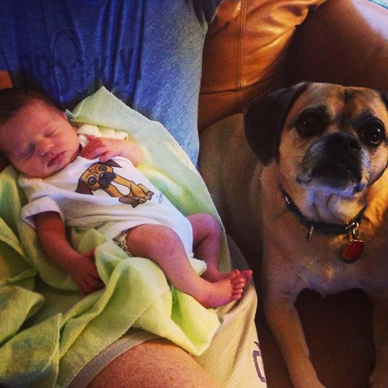 perros-y-bebés-4