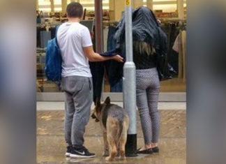 Pareja ayuda a un perro atado bajo la lluvia