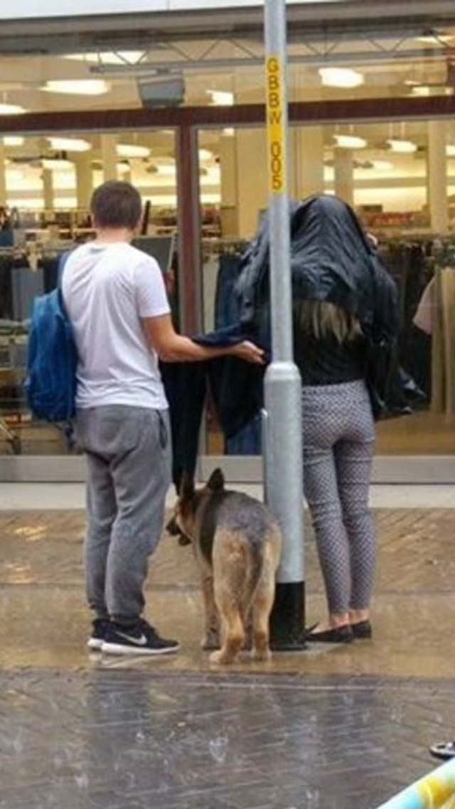 pareja-ayuda-a-un-perro-bajo-la-lluvia-1