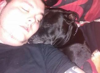 Lucha por salvar a su perro que le impidió suicidarse