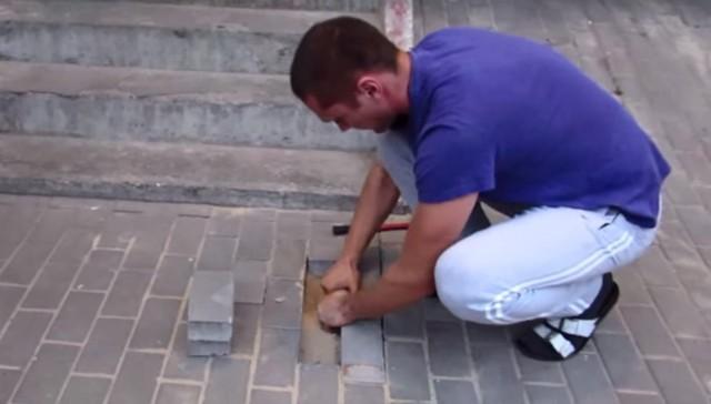Rescatan a perra embarazada enterrada debajo de la acera