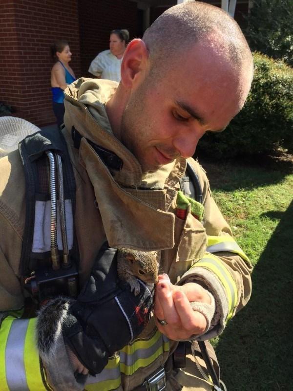 ardilla-es-salvada-por-bomberos-en-un-incendio-1