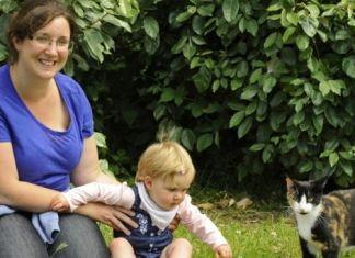 Gato alerta a su familia sobre un intruso