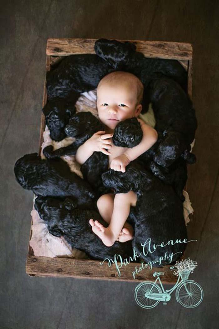 mujer-y-su-perra-dieron-a-luz-el-mismo-día-2