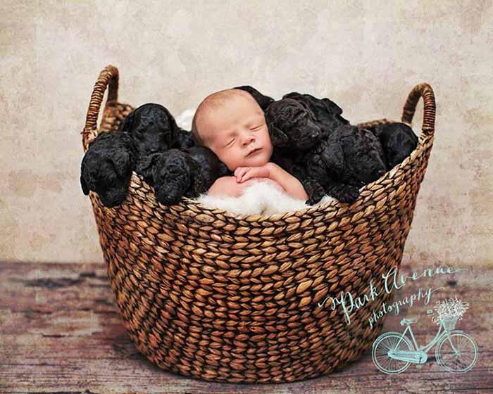mujer-y-su-perra-dieron-a-luz-el-mismo-día-3