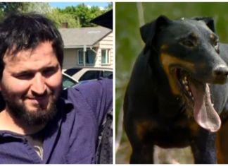 Hombre perdió la vida tratando de salvar a sus perros
