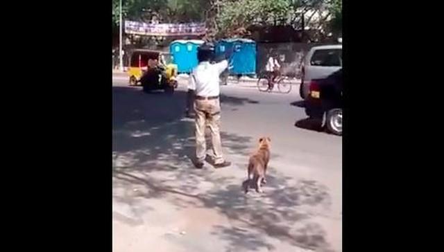 policía ayuda a un perro a cruzar la calle