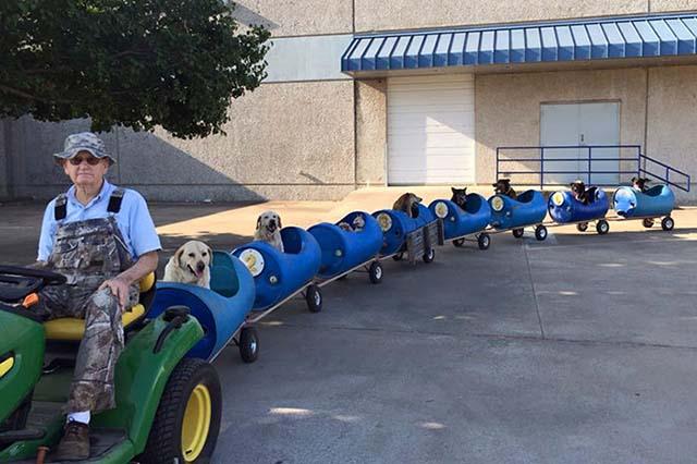 Construyó un tren para pasear a su perros rescatados