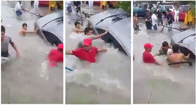 Rescatan a un perro dejado en el auto