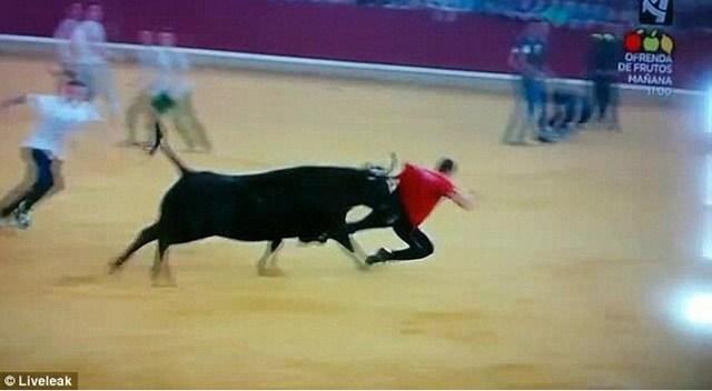 Hombre humillado después de que el toro lo dejó desnudo