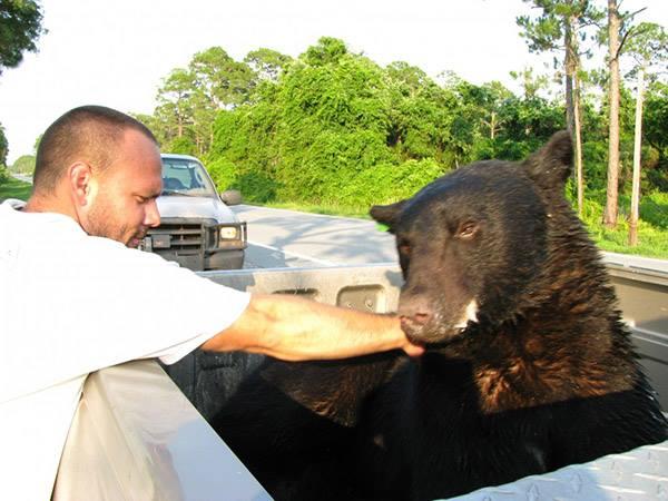 Adam y el oso que rescató