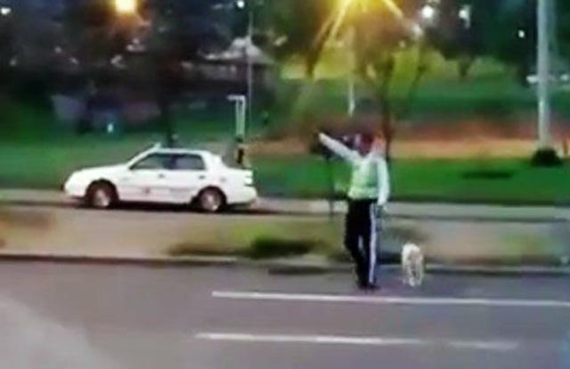 agente de tránsito ayuda a un perro herido a cruzar la calle