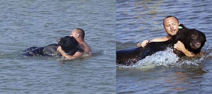 hombre se lanza al agua para salvar a un oso
