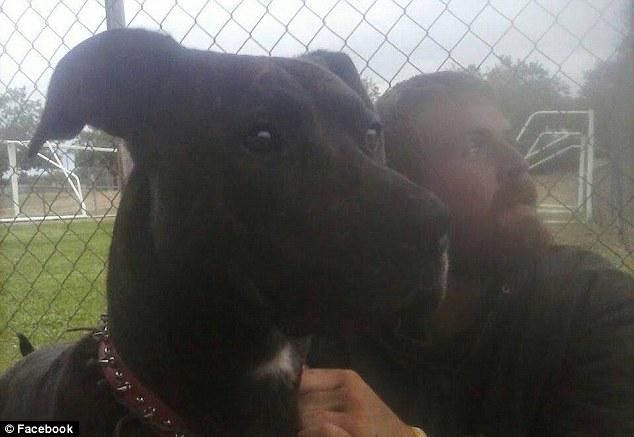 hombre sin hogar rescata a su perro de un refugio