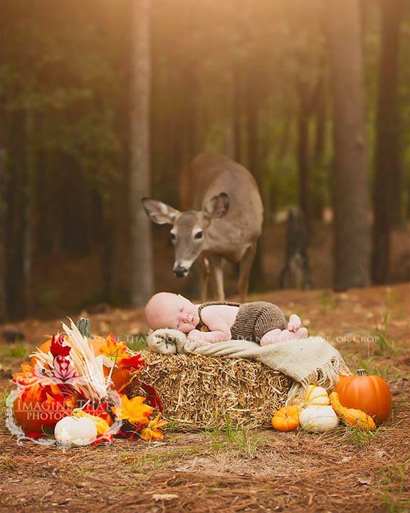 primera-sesión-fotos-bebé-ciervo