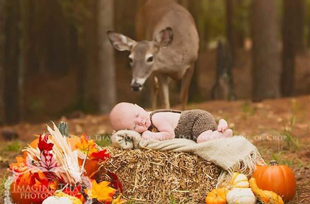 primera sesión de fotos de un bebé