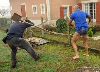 proteccionistas de aves agredidos con una pala