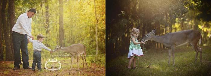 sesión-fotos-ciervo-aparición