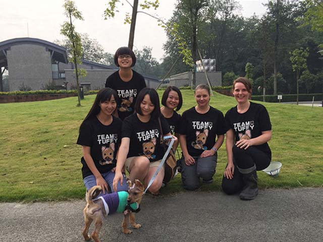 Grupo ayuda a cachorro quemado con agua hirviendo