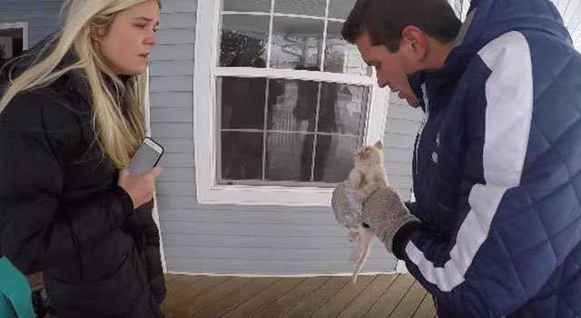 familia encontró a un gato congelado