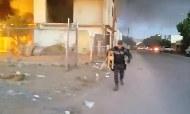 policía salva a un perro en un incendio