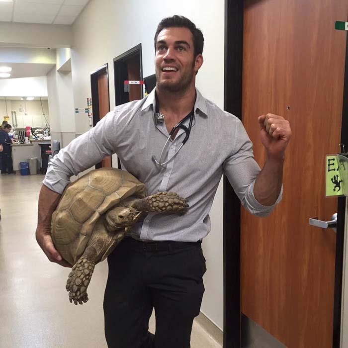 Veterinario y una tortuga