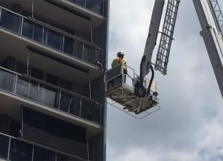 gato atrapado en un balcón