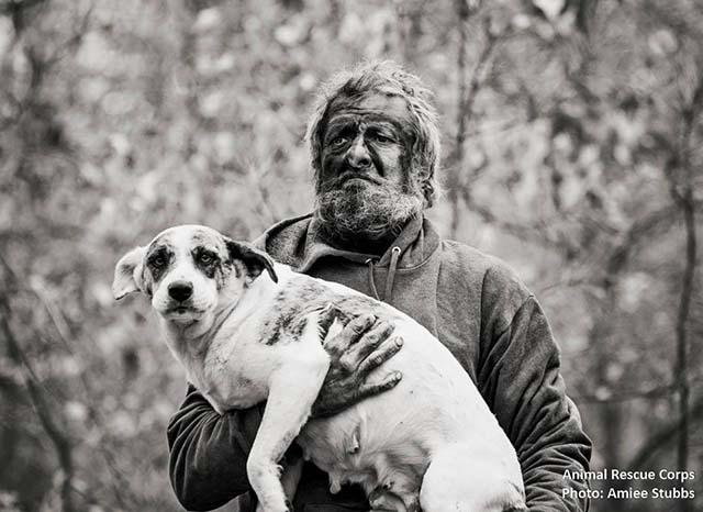 hombre salvaje vivía con 31 perros