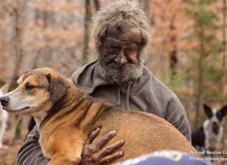 Rescatan 31 perros