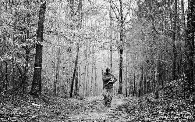 hombre vivió 16 años en el bosque con perros