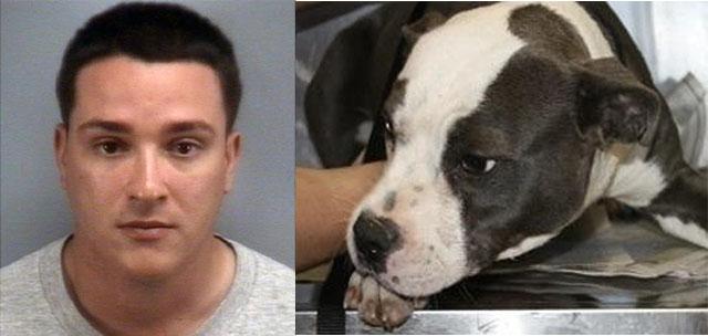 obtuvo la pena máxima por asesinar a su perro