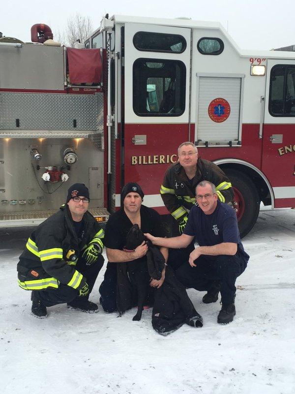 perra rescatada de lago congelado