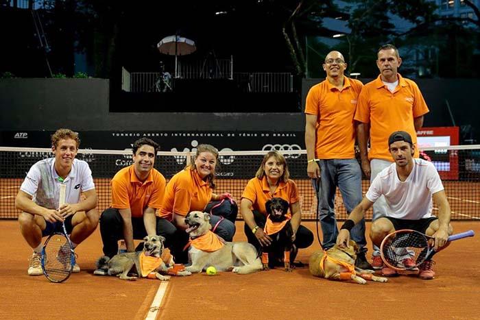 Perros en el abierto de Sao Paulo