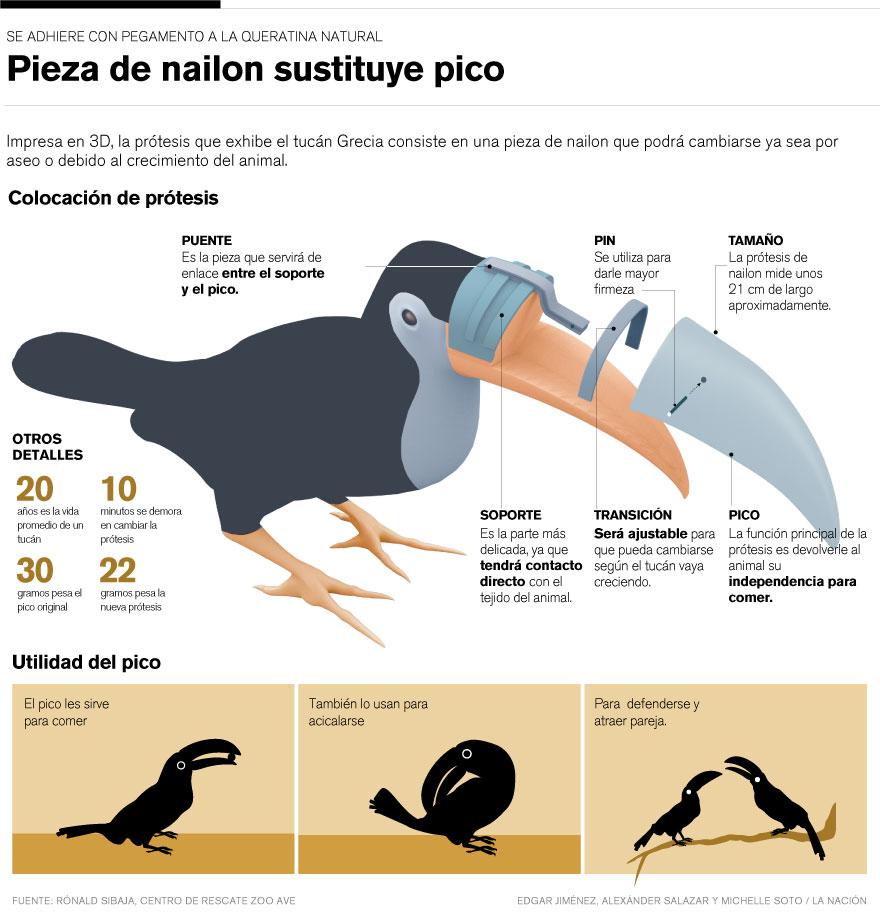Prótesis del tucán