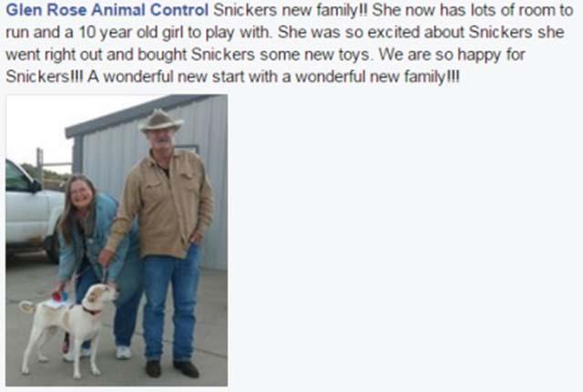 Snickers y su nueva familia