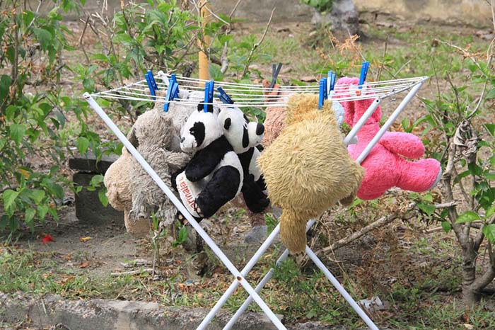 animales de peluche para huérfanos