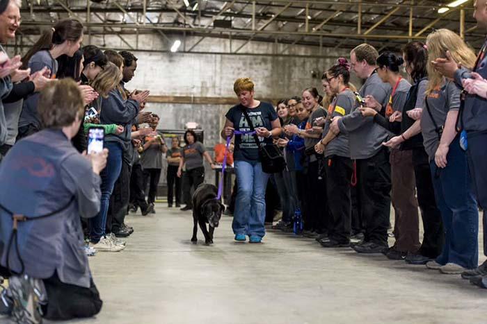 último perro adoptado en evento