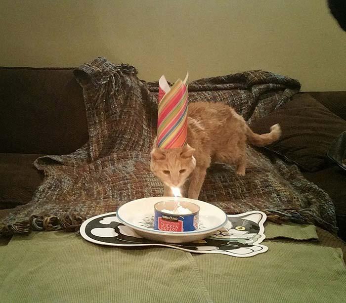 Cumpleaños de Tigger