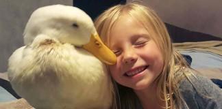 Esta niña tiene vínculo muy especial con un pato