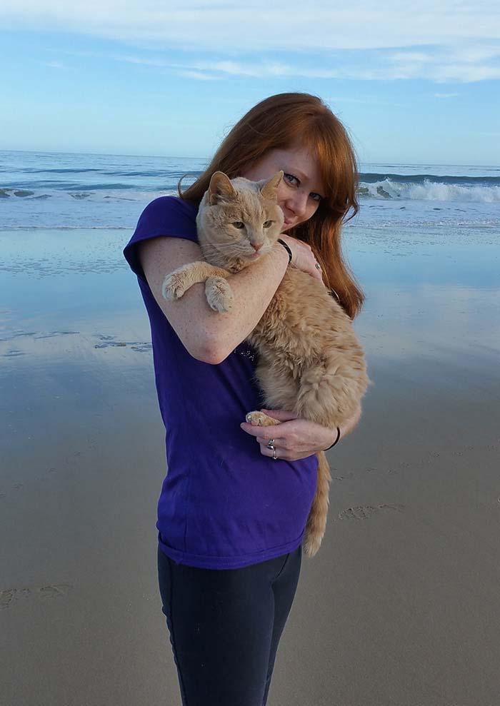 Gato abandonado es feliz