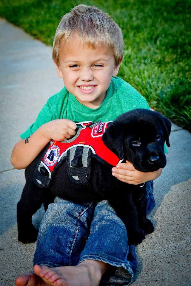 Luk y su perro de servicio