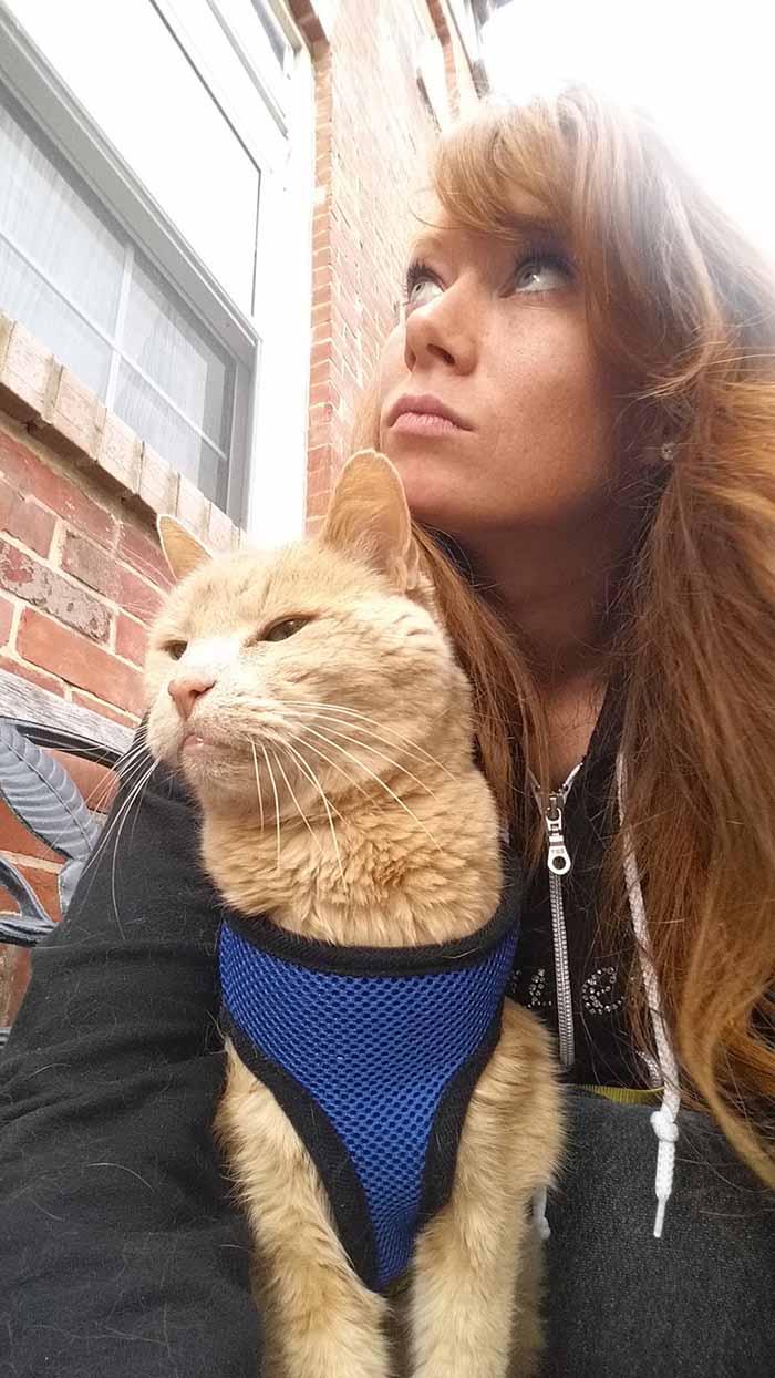 Mujer rescató un gato de 21 años