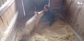 Patricia recibe besos