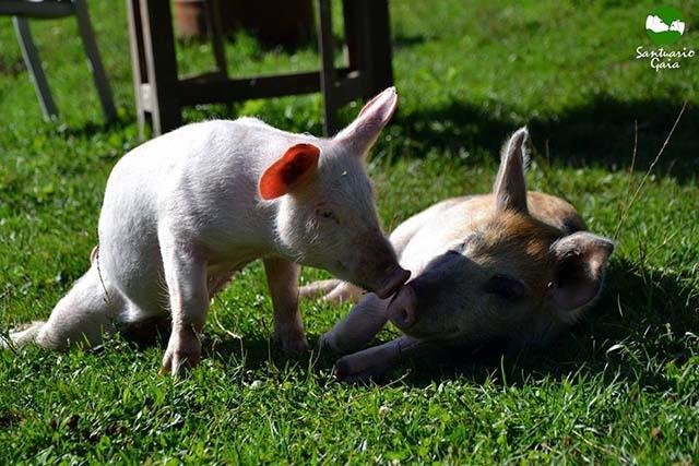 Patricia y su amigo